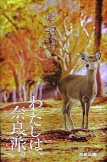 奈良-14.jpg